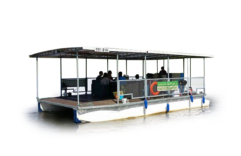Party barbecue boat